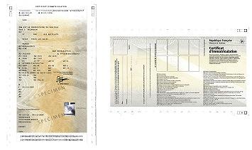 specimen d 39 un certificat d 39 immatriculation fran ais. Black Bedroom Furniture Sets. Home Design Ideas